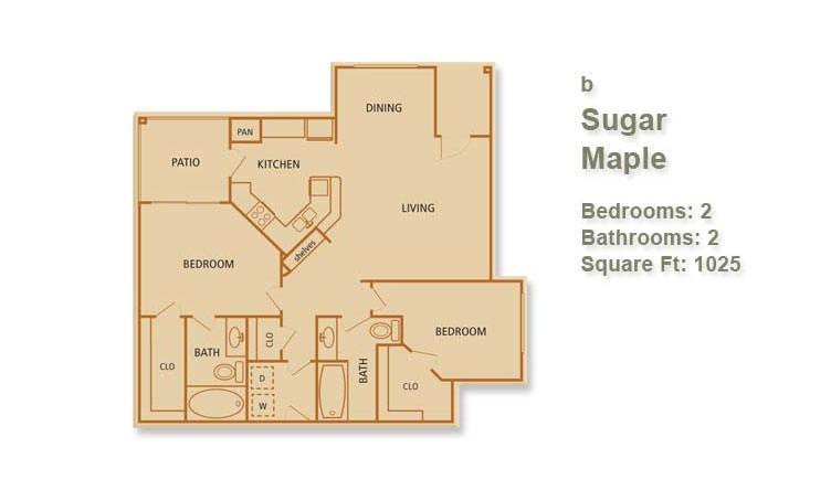 B - Sugar Maple